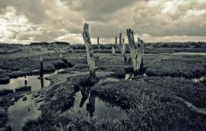 Staithe by grbush