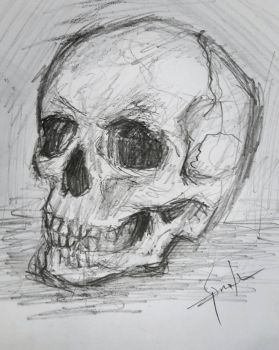 skull sketch by skirniskolops