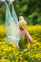 Tinker Bell and Wings by N4miine