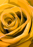 Yellow Rose by elviraNL