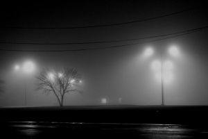 Dark and Foggy Night by Veritas-Aequitas-90