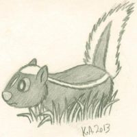 Little Skunk Sketch by LordDominic