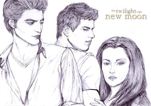 Twilight- New Moon 'Ballpoint pen drawing' by AstraLNovaZ