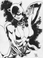 CATWOMAN CLASSIC by jdavidlee1979