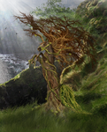 The Ancient Tree by Syeiraxx