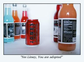 Yes Limey - Jones Soda by LadyMorella