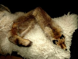 Coal fox stole - SOLD by StanHoneyThief