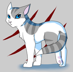 Ivypool by DrakynWyrm