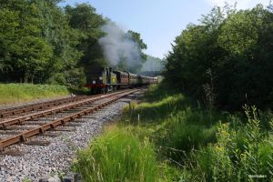 Steam travel on the Bluebell Railway by ancoben