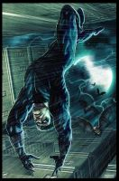 NightWing  The fall by Rennee