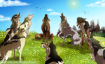 .:WoLF:. Sing Us A Song by Nafsi-chan
