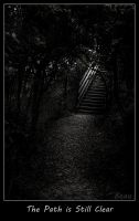 The Path -5685Am by BeauNestor