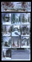Winter Fantasies Backgrounds by moonchild-ljilja