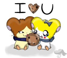 I love you more then cookies by turtwigturt
