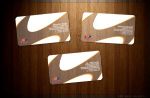 Vojvodina Business Cards by themetamy