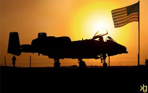 A-10 Sunset by VectorJones