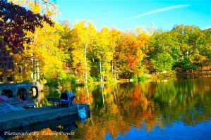 Lake Susan Fall Colors 6780 by agapelight