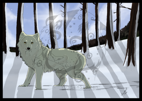 White Wolf by TussenSessan