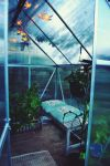 Greenhouse in my garden by LeaLion