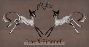 Isaz X Eirianell Fawn Design by SunsetRevelation