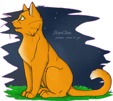 FireStar Praying StarClan + by x-Mlice