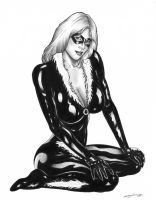 Black Cat 2 by ReneGarJ