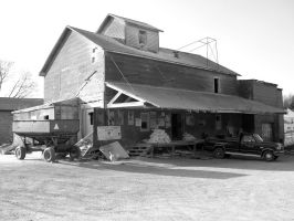 Musguire Milling and Feed CO. by LDLAWRENCE