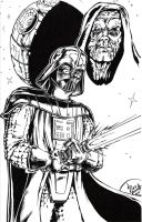 Darth Vader by PeterPalmiotti
