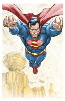 Superman by FreddieEWilliamsii