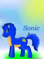Sonic Pony by sexyback2010