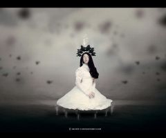Illusion by Secr3tDesign