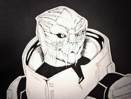 Garrus by Creativegreenbeans