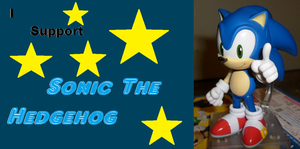 I Support Sonic The Hedgehog by MarioBlade64