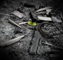 Ashes to Ashes by decors