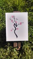 Cherry Blossoms by Dorigard