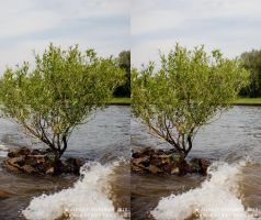 ... Stereoscopic 3D by Osipenkov