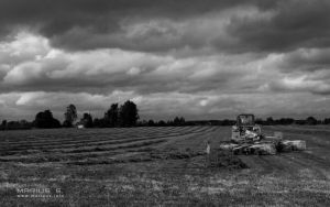Time to work on thoes fields by marius-s