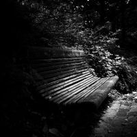 Lost bench by burzinski