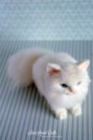 Needle felted white kitty II by SaniAmaniCrafts