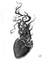 broken heart by Olloff