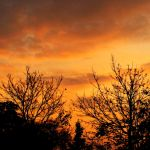 My Obsession With Orange by iamthemindfire