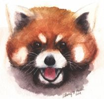 Red Panda! by Audriana