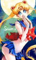 sailormoon ver.1 by pt0317