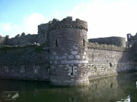 Beaumaris Castle moat by NuclearJackal