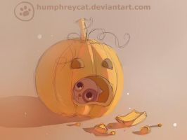 test pumpkin by humphreycat