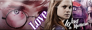 Harry and Ginny Banner by VaL-DeViAnT