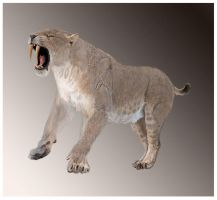 Smilodon populator roaring by Leogon