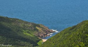 Northeast Shore Cape Breton by Brian-B-Photography