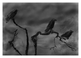 The Crows by Krellyan
