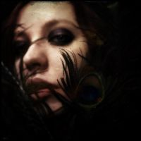 Feathers and Shadows by elizabethunseelie